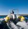 Подвесной лодочный мотор Honda BF 90 DK4 LRTR - фото 5400