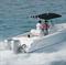 Подвесной лодочный мотор Honda BF 225 AK2 XU - фото 5416