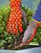 Перчатки садовые цветочные WOLF-Garten GH-BA 8 (р. 8) - фото 8276
