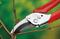 Секатор в блистере WOLF-Garten RR-EN - фото 8307