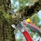 Секатор с наковальней профессиональный в блистере WOLF-Garten RS 5000 - фото 8321